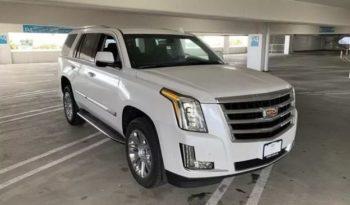 2019 Cadillac Escalade Lease Special
